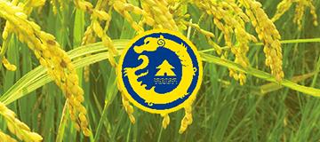 大熊科技成功与辽宁浩谷之星智慧农业科技合作
